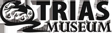 Trias Museum - développement de jeux vidéos